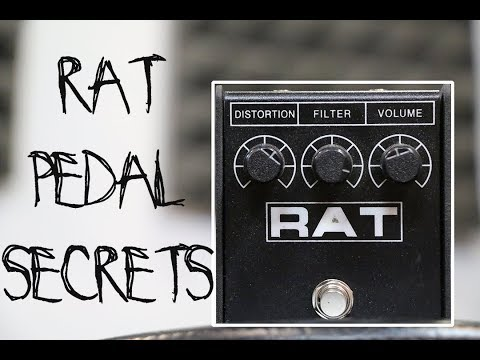 Let's talk about the Rat Distortion pedal...Is it voodoo or sorcery?