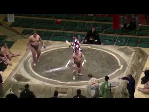 mira el tremendo nocaut en una pelea de sumo