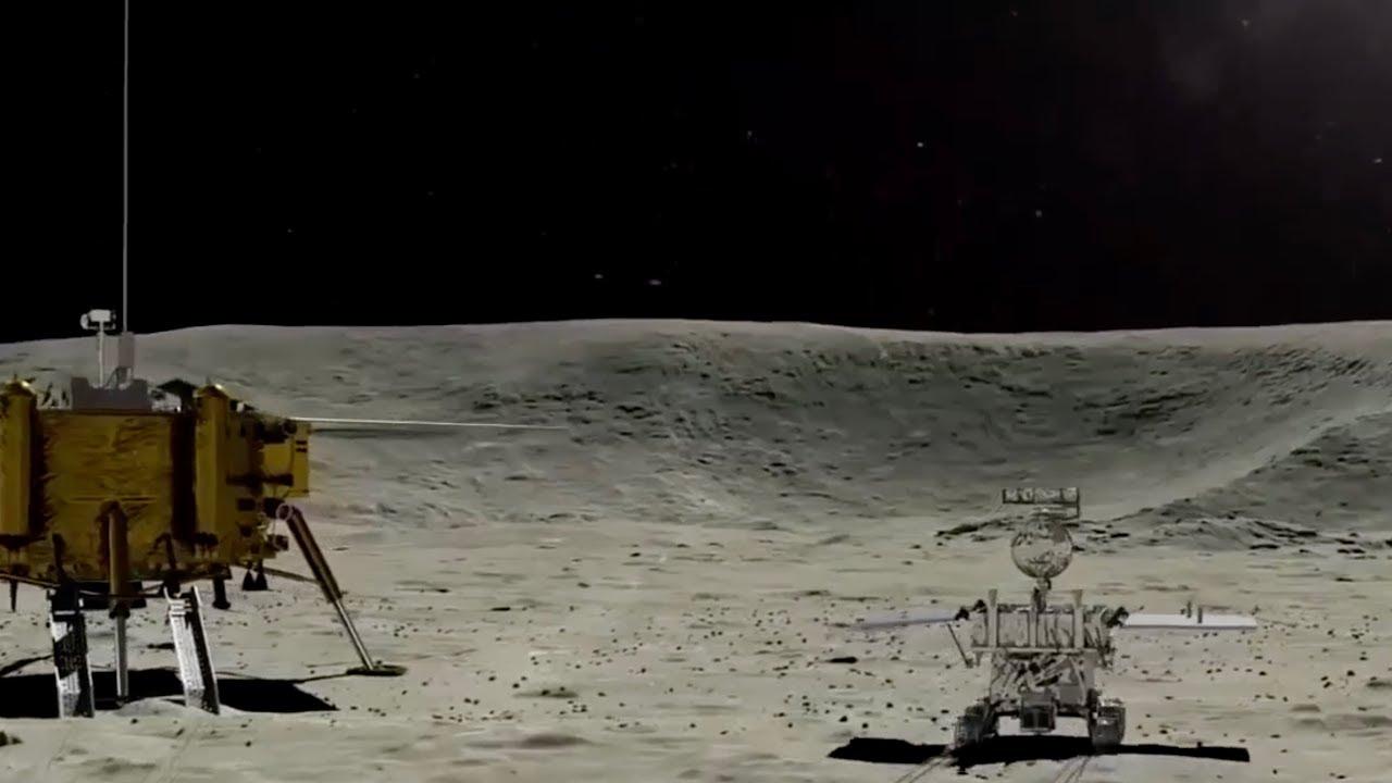 Berlomba ke Bulan: Hewan Reptil Ini Selamat dari Dikirim Cina ke Bulan