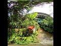 Kuala lumpur butterfly park 3D VR180