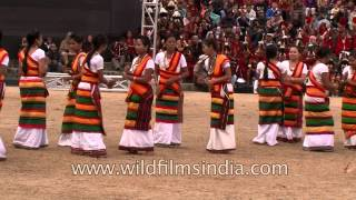 Dimasa-Kachari women folk song and dance