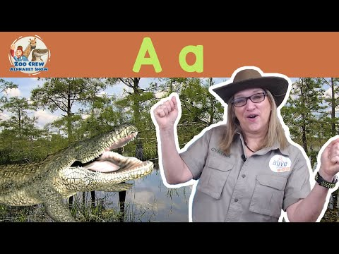 zoo-crew-alphabet-show-|-alligators-and-letter-a