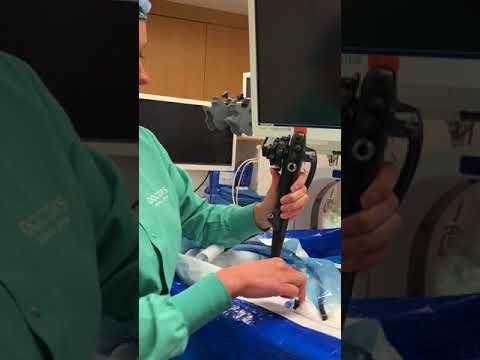 Olympus Endoscope Setup II
