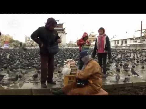 Expedición al país natal - Mongolia | Reportajes y documentales