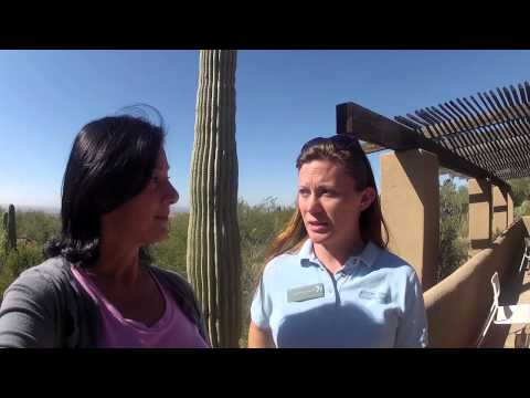 49 before 50 - Arizona-Sonora Desert Museum