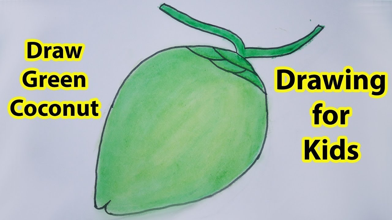 How To Draw A Green Coconut Step By For Kids Paint