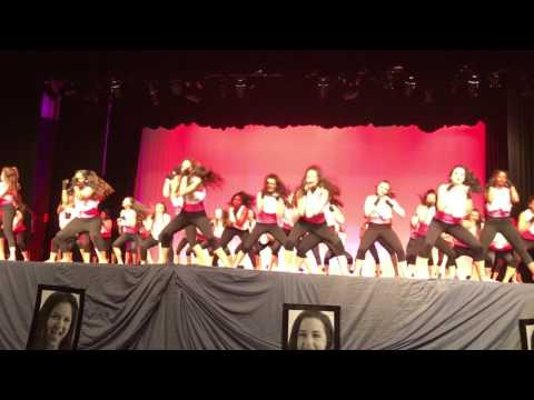 I want to start a fight – MHS Marquettes- Spring Show 2017