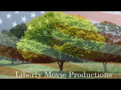 Liberty movie productions 2