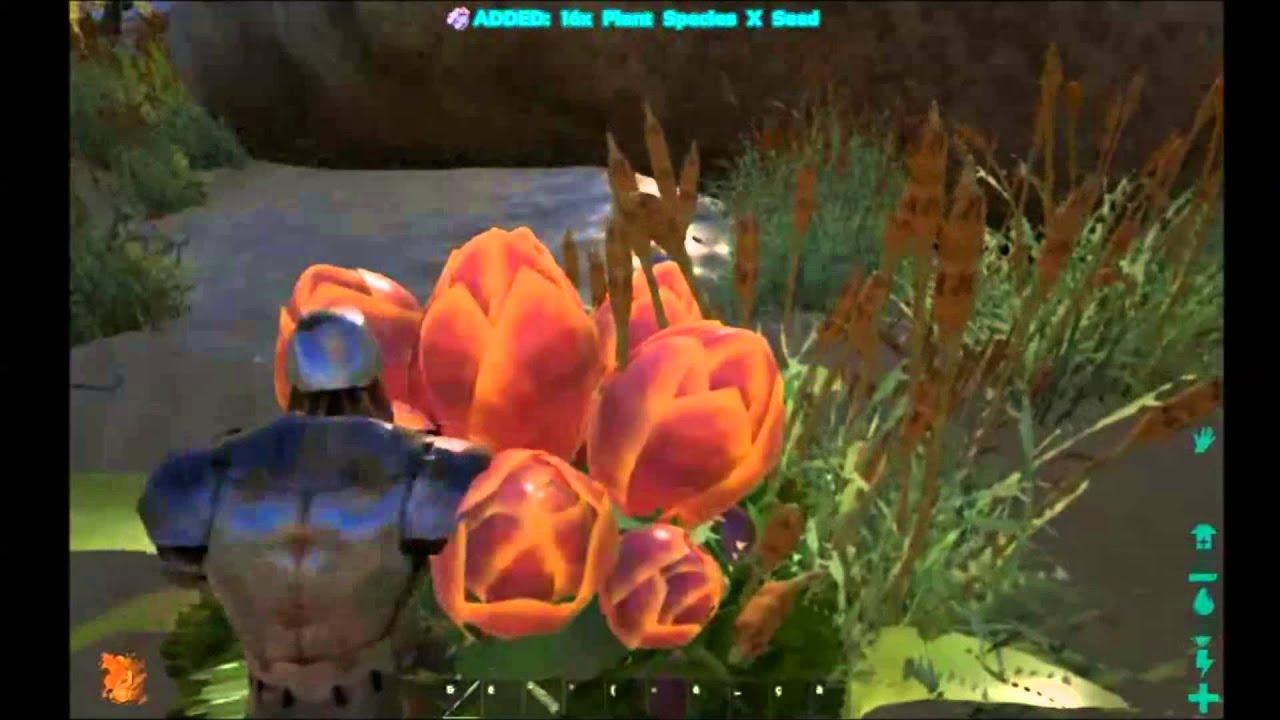 Ark Survival Evolved Fr Comment Et Ou Trouver Des Plant Species