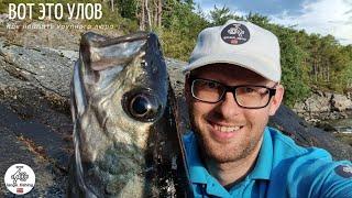 ВОТ ЭТО РЫБАЛКА КАК ПОЙМАТЬ КРУПНОГО ЛЮРА Рыбалка в Норвегии с берега Норвегия ЛЮР