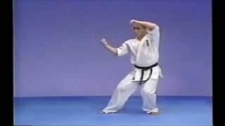 極真空手の型・平安Ⅱです。 KyokushinKata Pinan2.