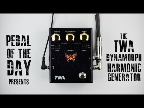 Totally Wycked Audio Dynamorph™ Envelope Controlled Harmonic Generator Guitar Effects Demo Video