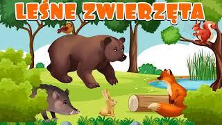 🐿 Leśne zwierzęta - Nauka zwierząt dla dzieci po polsku