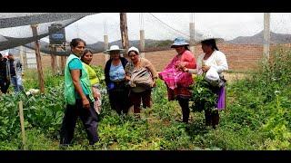 Mujeres Agricultoras y huertos familiares frente al coronavirus