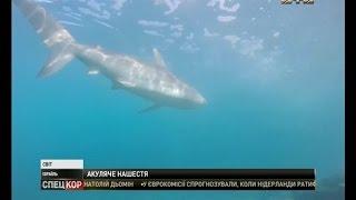 видео Чем привлекает Красное море отдыхающих из России