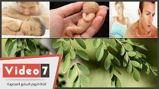 بالفيديو..عطار: عشب المورينجا يساعد فى علاج العقم للرجال والنساء
