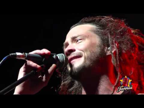 Soja  jannus live 2013