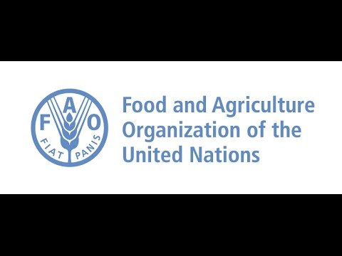 FAO - World Food Day 2016 - Food and Agriculture Organization - Corporate Event Video