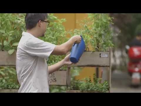 Urban Farming in Singapore | Outliers | Channel NewsAsia Connect