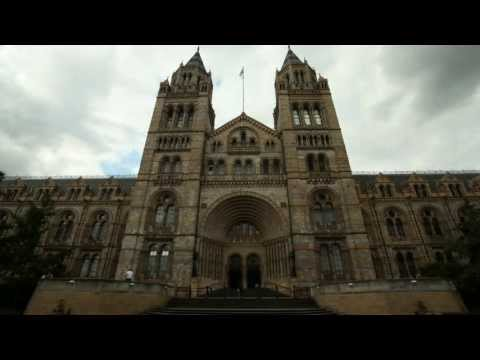 Museum Secrets: Inside the Natural History Museum (Trailer)