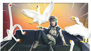 Rainbow Six: Siege but every time I die a goose gets added to my screen