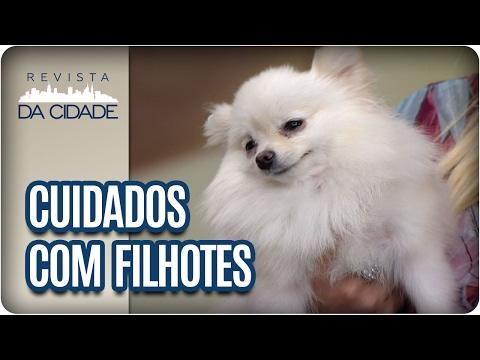 Primeiros cuidados com filhotes - Revista da Cidade (14/02/2017)