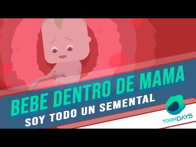⭐️ BEBE DENTRO DE MAMA   CONOCIENDO A NIL   TOONDAYS