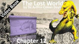 Chapter 12: It Was Dreadful In The Forest. Classic Literature Video...