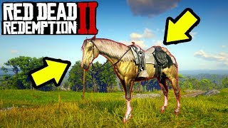 BEST HORSES IN Red Dead Redemption 2! Top 5 Best Horses RDR2! What is Best Horse in RDR2?