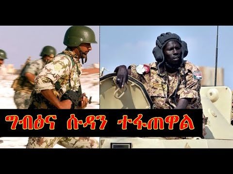 ሱዳን ድንበሯን ዘጋጅ! Sudanese troops deployed on border with Eritrea