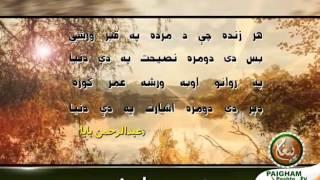 Lapanda Dak Sheruna 14- له پندہ ډک شعرونه