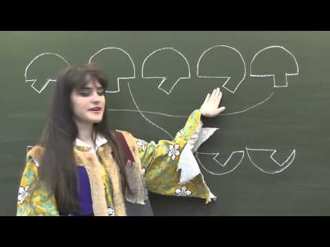 Математика 1 класс. Урок 7. Как решить задачу? (2012)
