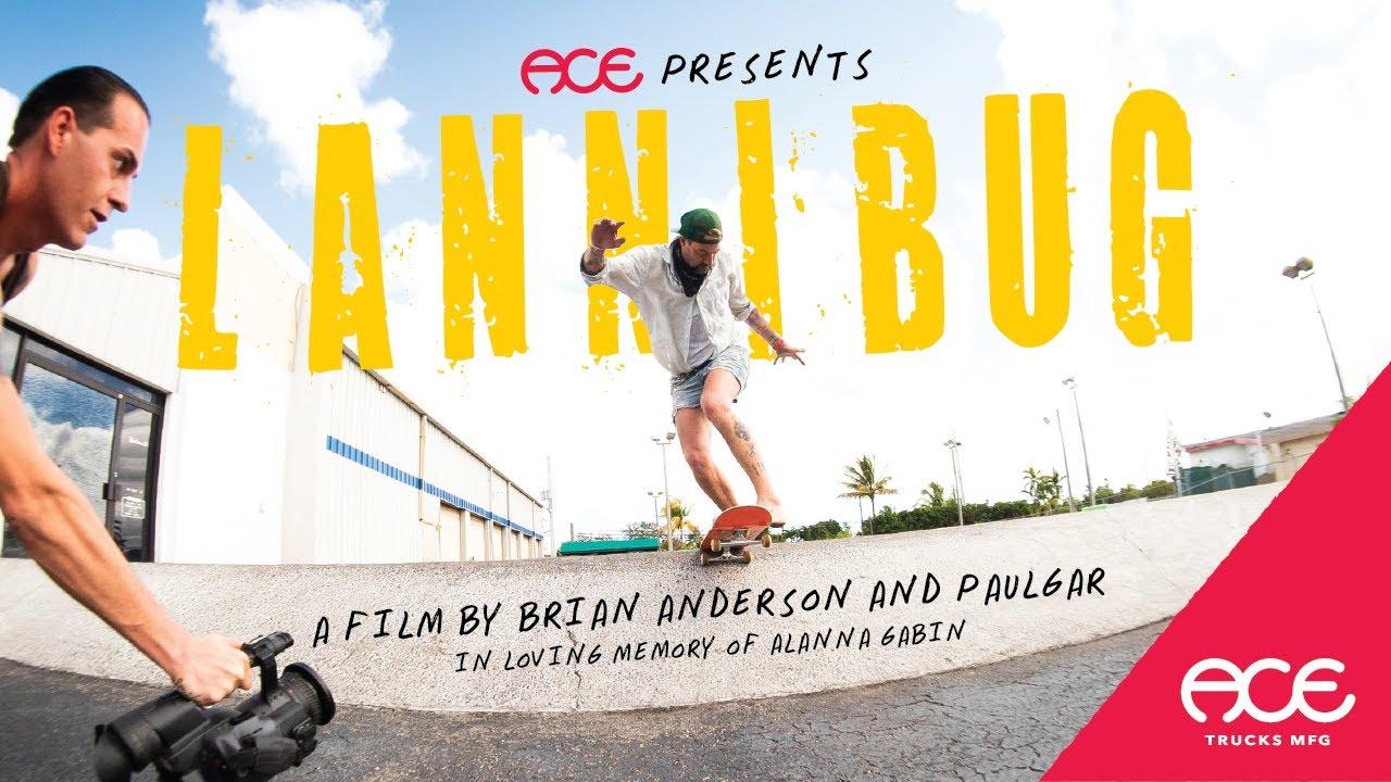 Brian Anderson - Lannibug