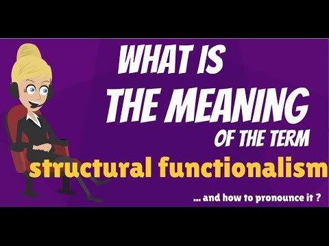 What is STRUCTURAL FUNCTIONALISM? What does STRUCTURAL FUNCTIONALISM mean?