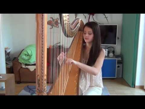 Story Of My Life - One Direction (Harp Cover)