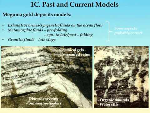 Overview of Meguma Gold Deposits: Past, Present, and a View to the Future