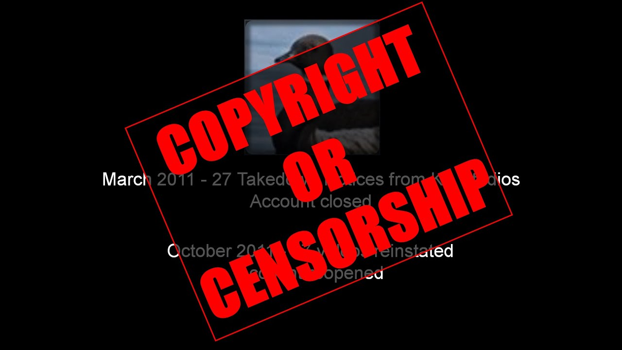 how to avoid a dmca takedown