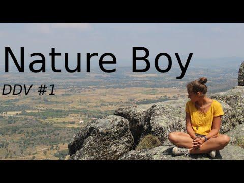 Victoire Oberkampf - Nature boy (Diario do verão #1)
