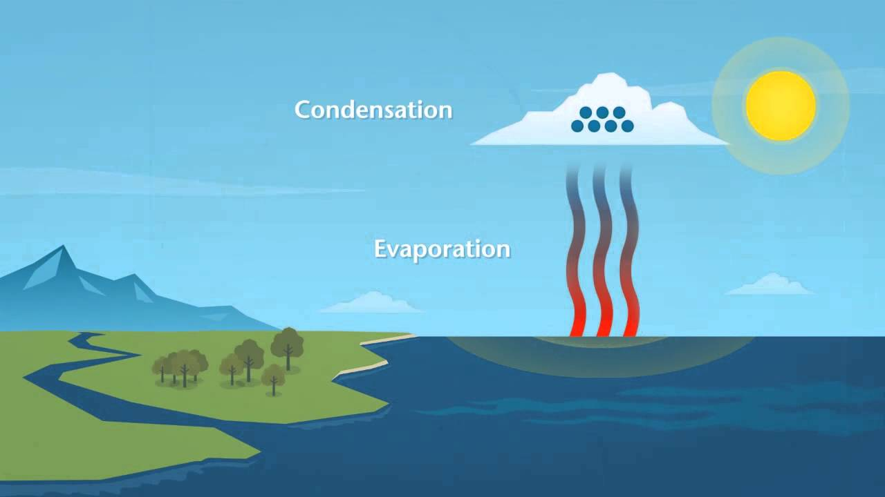 water cycle diagram education interactive discovery wiring diagram Interactive Water Cycle Diagram USGS