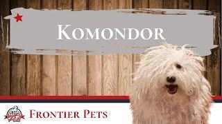 Komondor Breed Facts