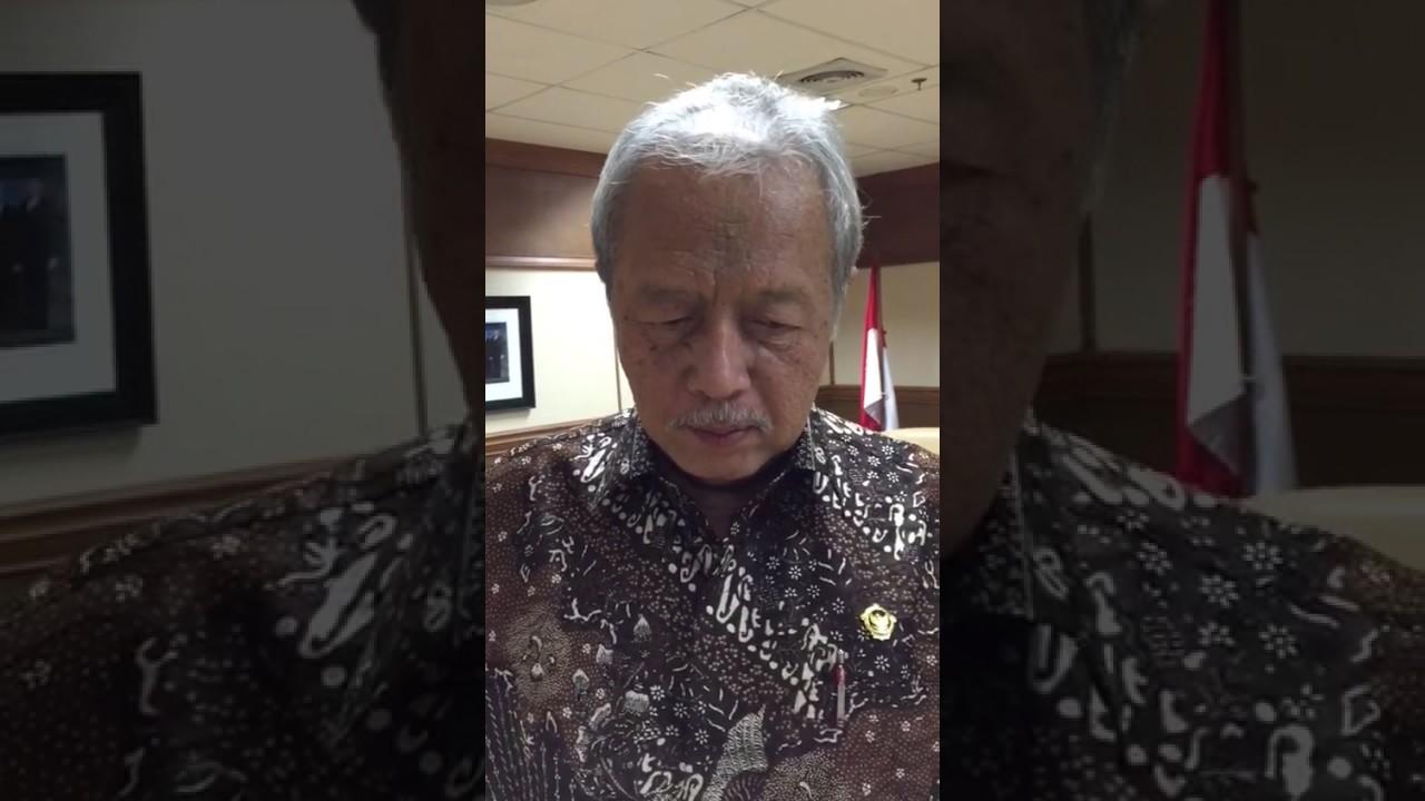Prof.Dr.Eddy Mulyadi, Anggota BPK