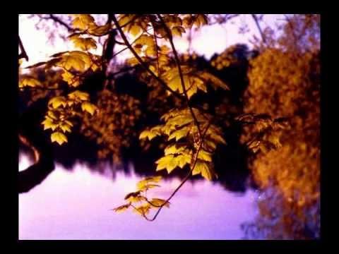 Осень Music Sergey CHEKALIN. Autumn. Beautiful  russian music. 美しいロシアの音楽