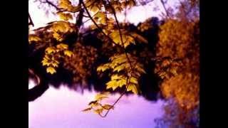 "Download ""Осень"" Music Sergey CHEKALIN. ""Autumn"". Beautiful  russian music. 美しいロシアの音楽 Mp3 and Videos"