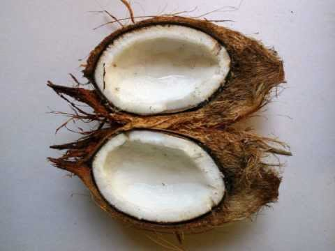 Coconut Products From The Philippines