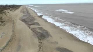Hemsby beach 22/02/16