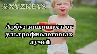 постер к видео 11 фактов о пользе арбуза