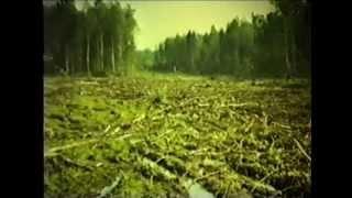 Экологические системы и их охрана