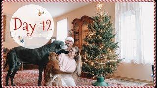 VLOGMAS DAY 12 // Decorating Grandmas Christmas Tree!