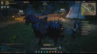 Tier 6 Horse Black & Red Black Desert Online Razimus Gaming