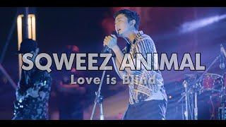 SQWEEZ ANIMAL - Love is Blind @Cat Foodival#4